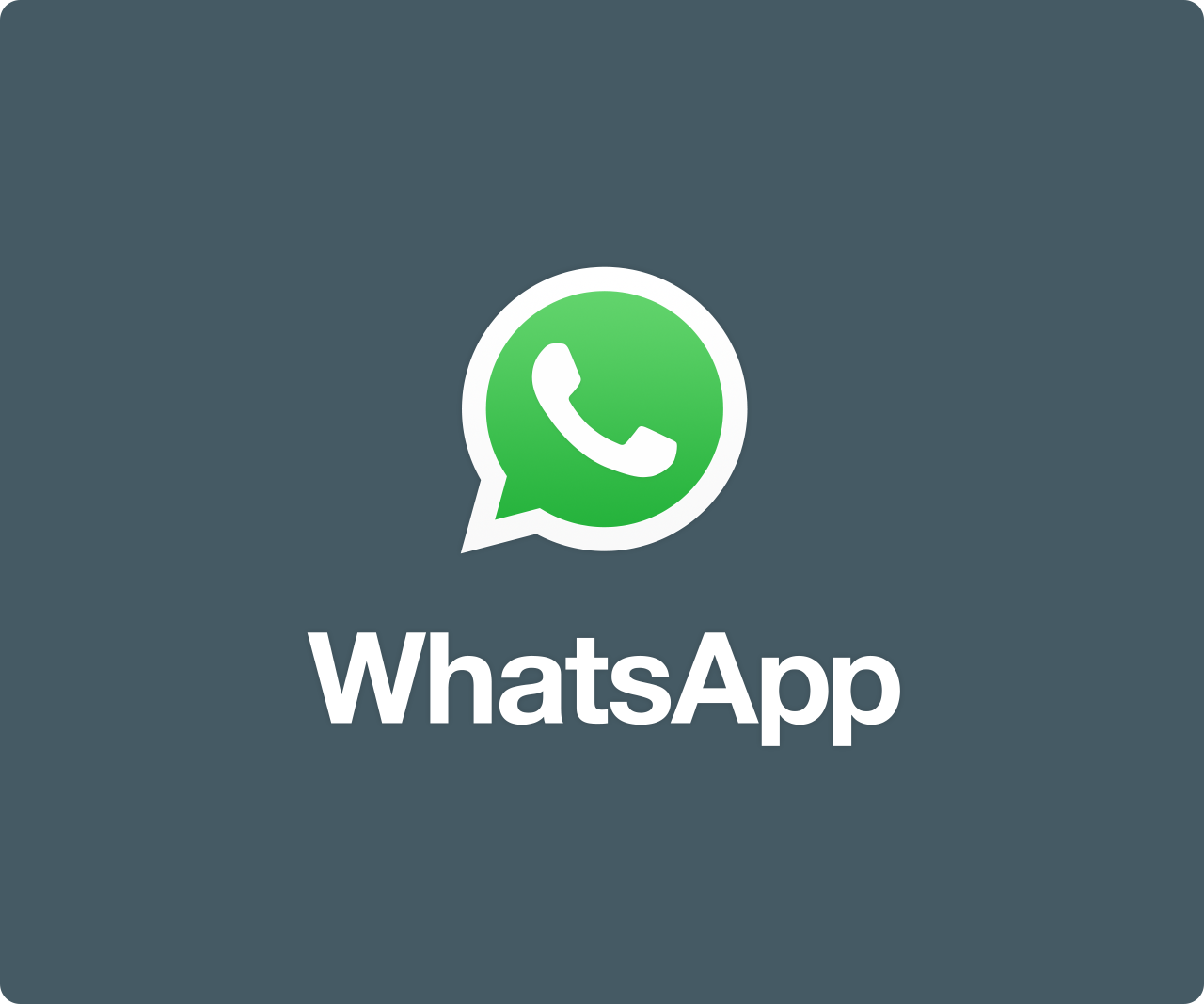 WhatsApp Numbers